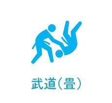 武道(畳)